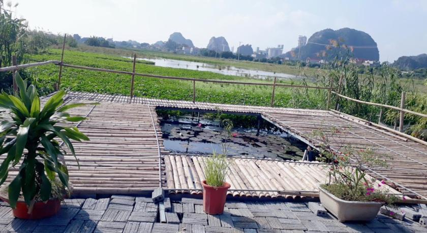 Tam Coc Rice Fields Homestay