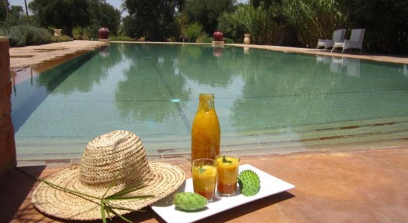 Best time to travel Morocco RIAD MAISON GRANDE PISCINE sans VIS A VIS