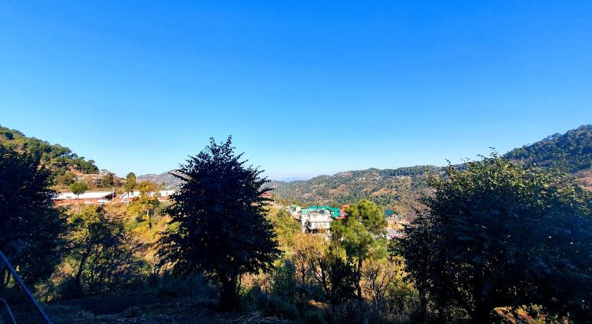 Wildleaf Kasauli -Valley Homz