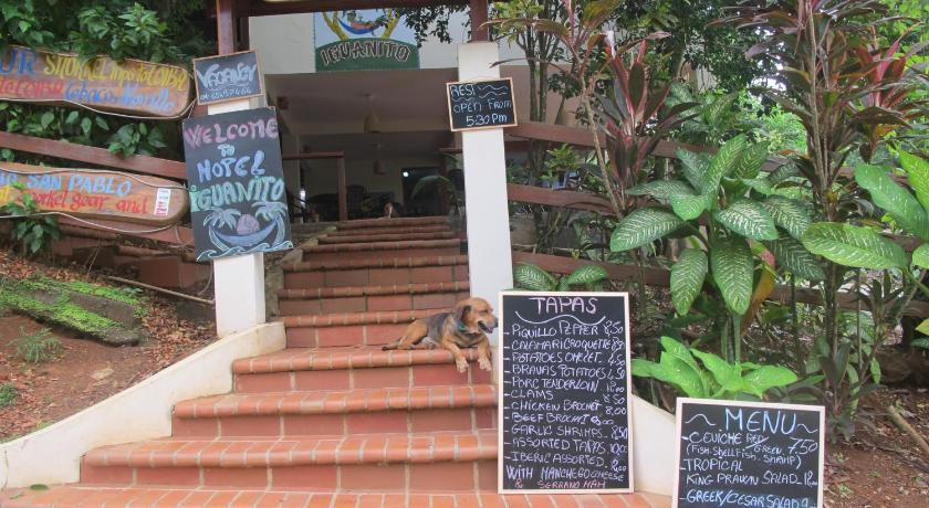 More about Hotel Iguanito