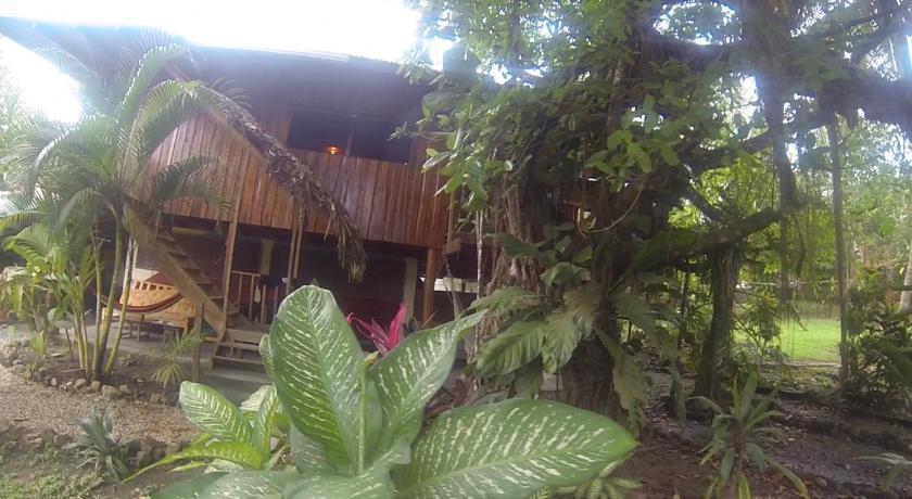 Tropical Pasta Surf House.Tropical Pasta Surf House And Hostel In Santa Teresa Room
