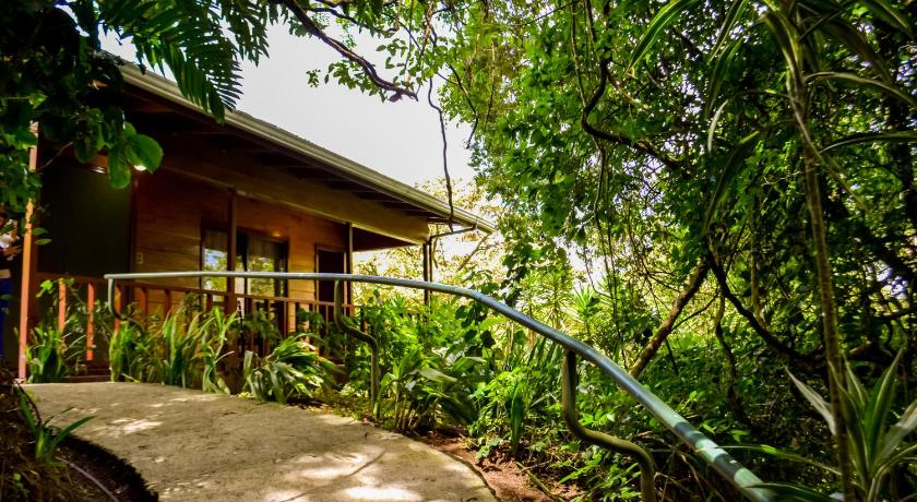 More about Jaguarundi Lodge