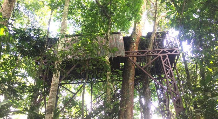 Tree House (Adults only) Maquenque Ecolodge