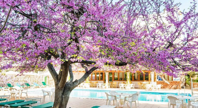 Best time to travel Spain Hotel Gaya