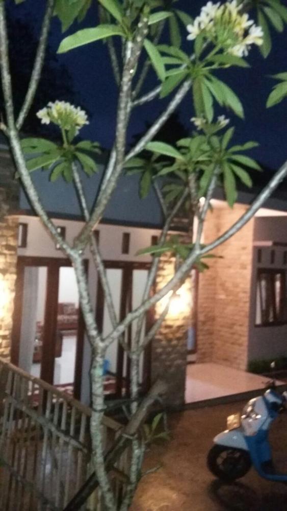 West Wisata Batu View Prices Photos Reviews Address
