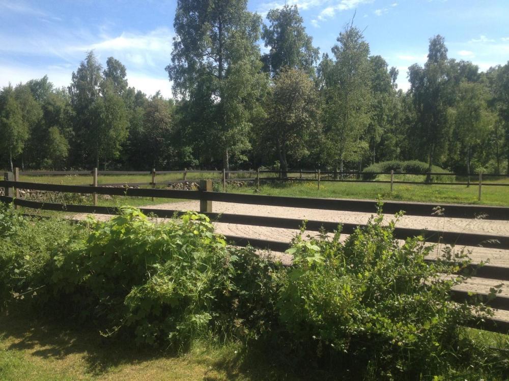 SVERIGES KYRKOR LAND RAGNHILD BOSTRM
