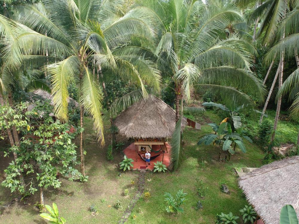Water to forest ecolodge prijzen fotos recensies adres. filipijnen