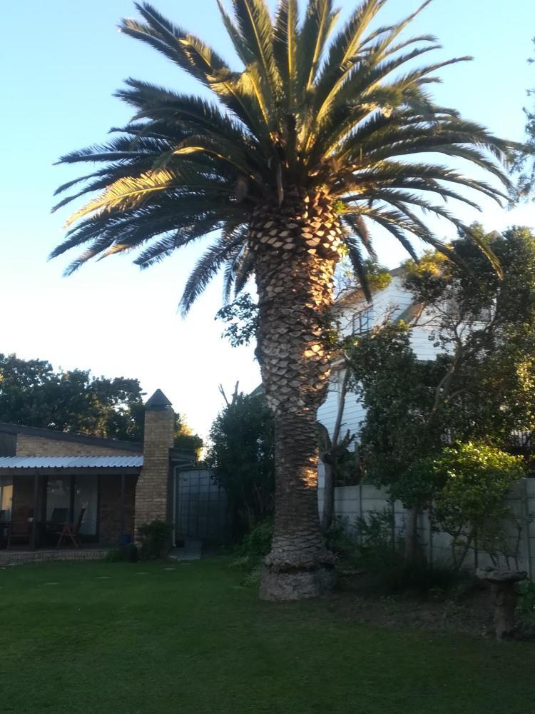 Pretoria øst dating