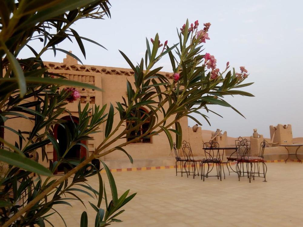 Sandfish Preise Fotos Bewertungen Adresse Marokko