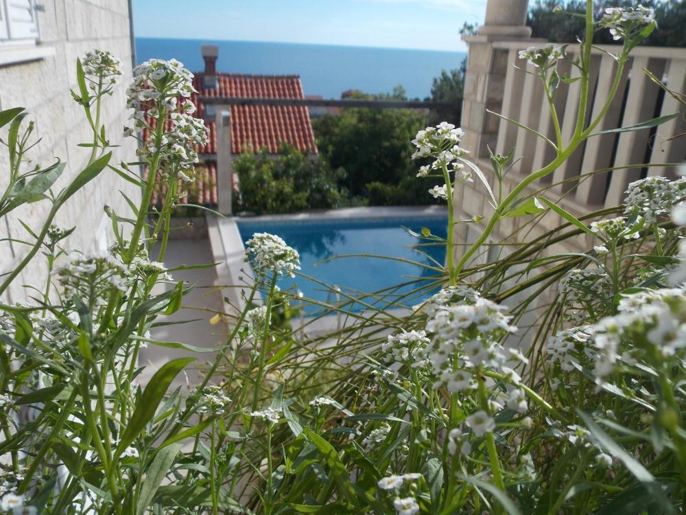 Guesthouse Villa Klaic