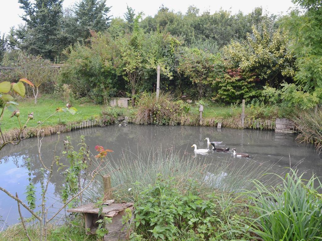 Pond House Cottage