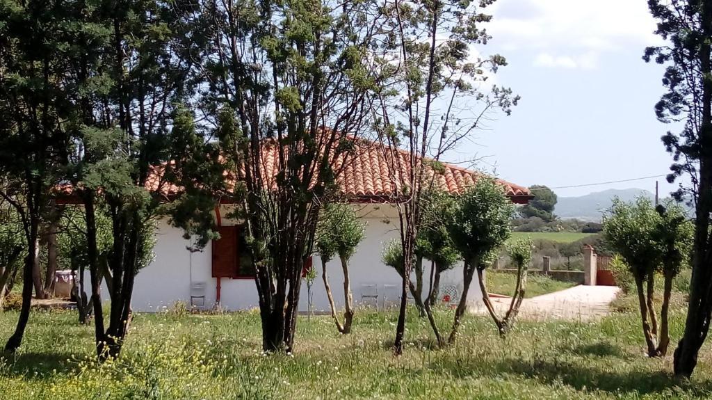 Villa Montis img3