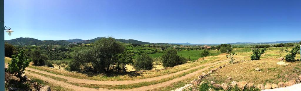 Agriturismo Sa Domo de s'Olia img8