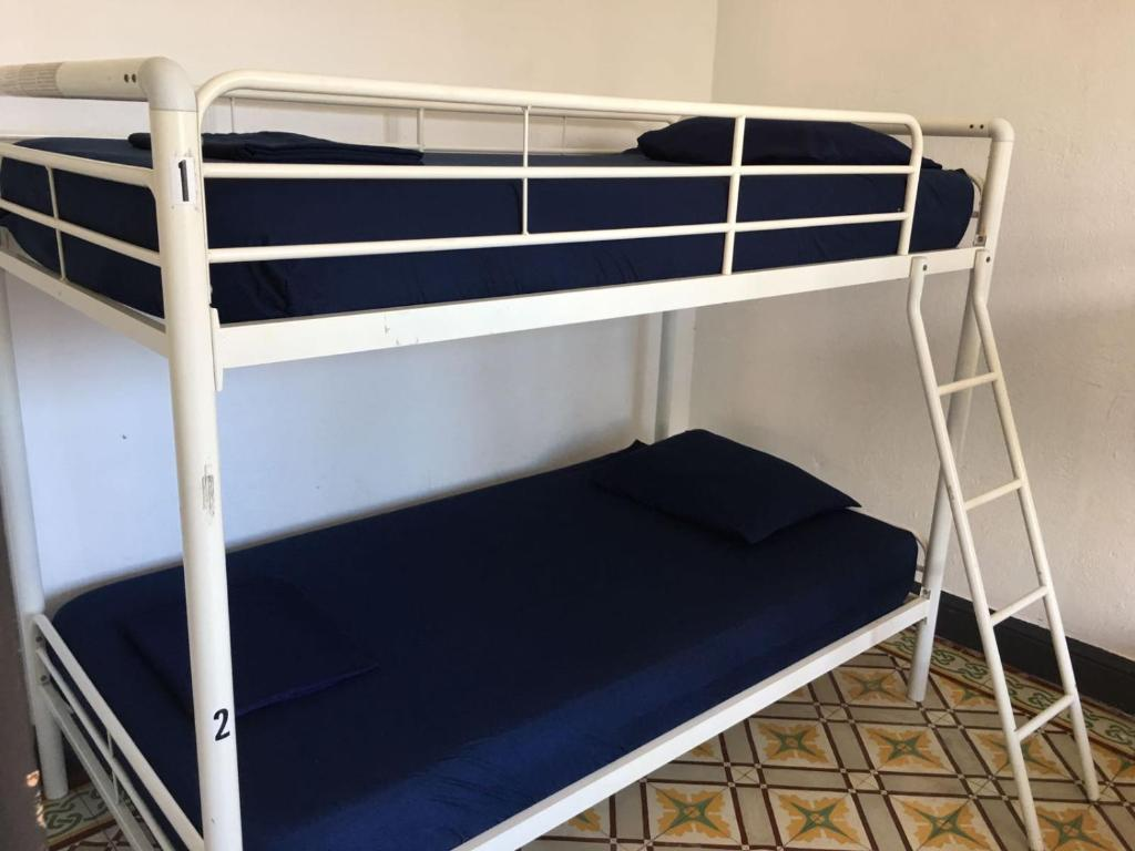 Bed in 4-Bed Mixed Dormitory Room Hostel H1 Miramar