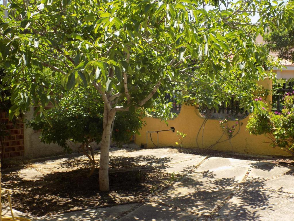 Casa Vacanze Gardenia image5