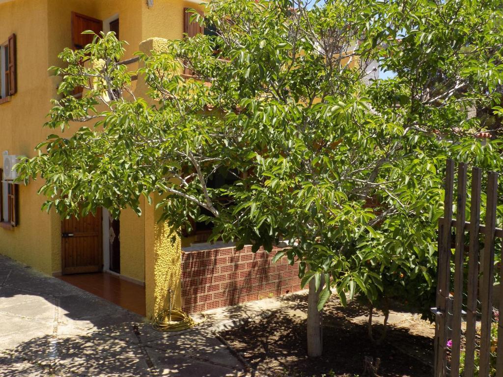 Casa Vacanze Gardenia image7
