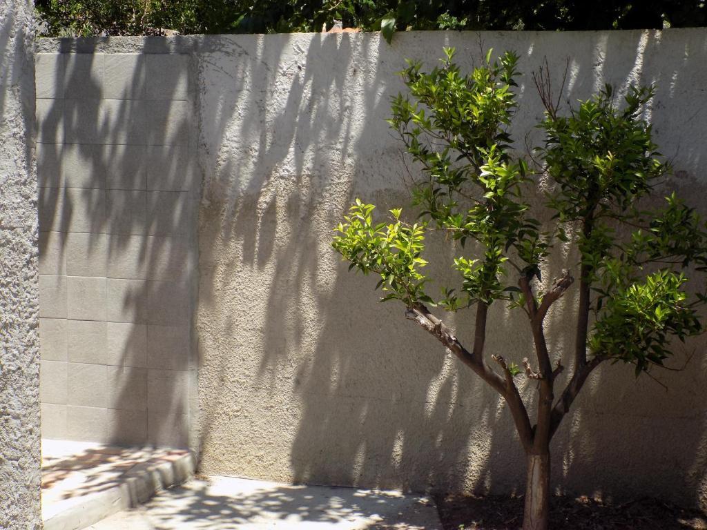 Casa Vacanze Gardenia image9