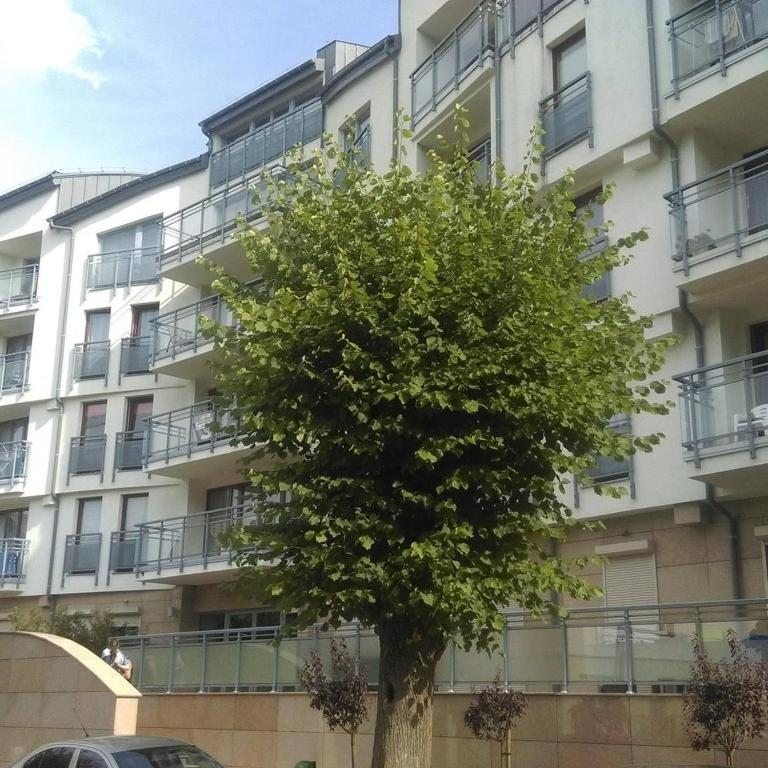 noclegi Międzyzdroje Apartament Flauta, Villa Marea