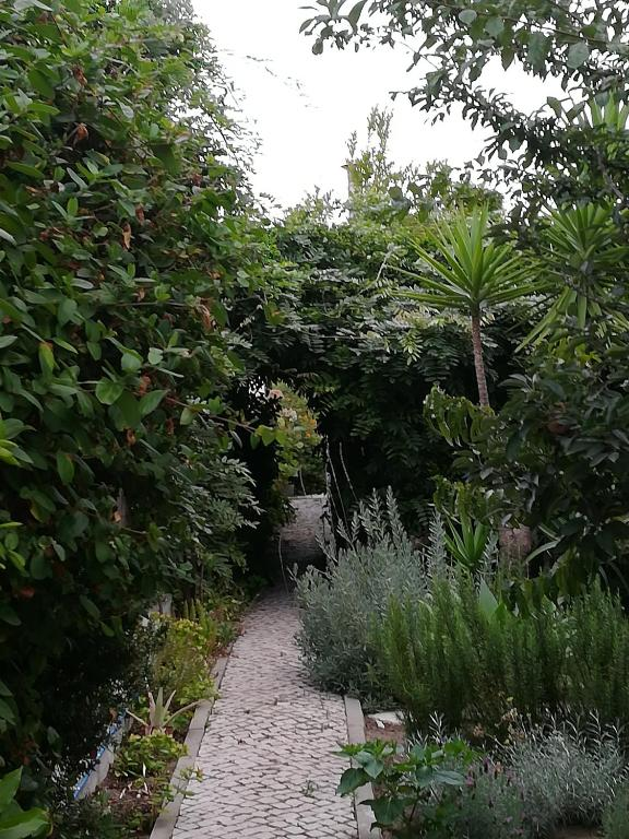 Casa da Anita, 2970-053 Aldeia do Meco
