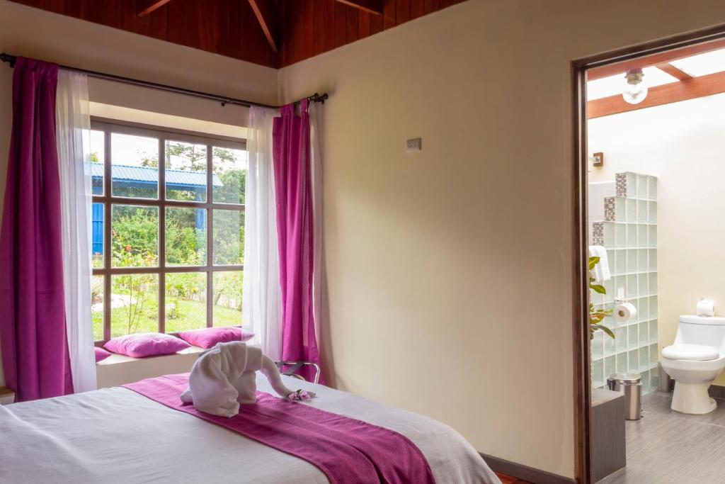 Double Room Hotel Villa Colon