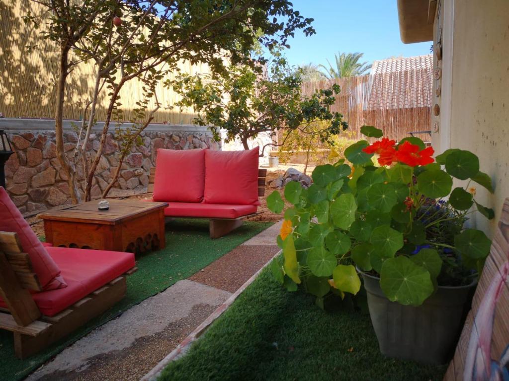 Red Sea Garden Apartment