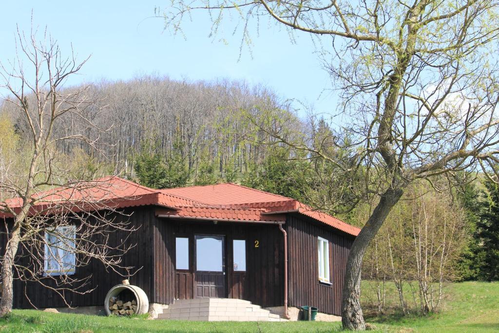noclegi Jelenia Góra Szałas Muflon - Mufflonhütte