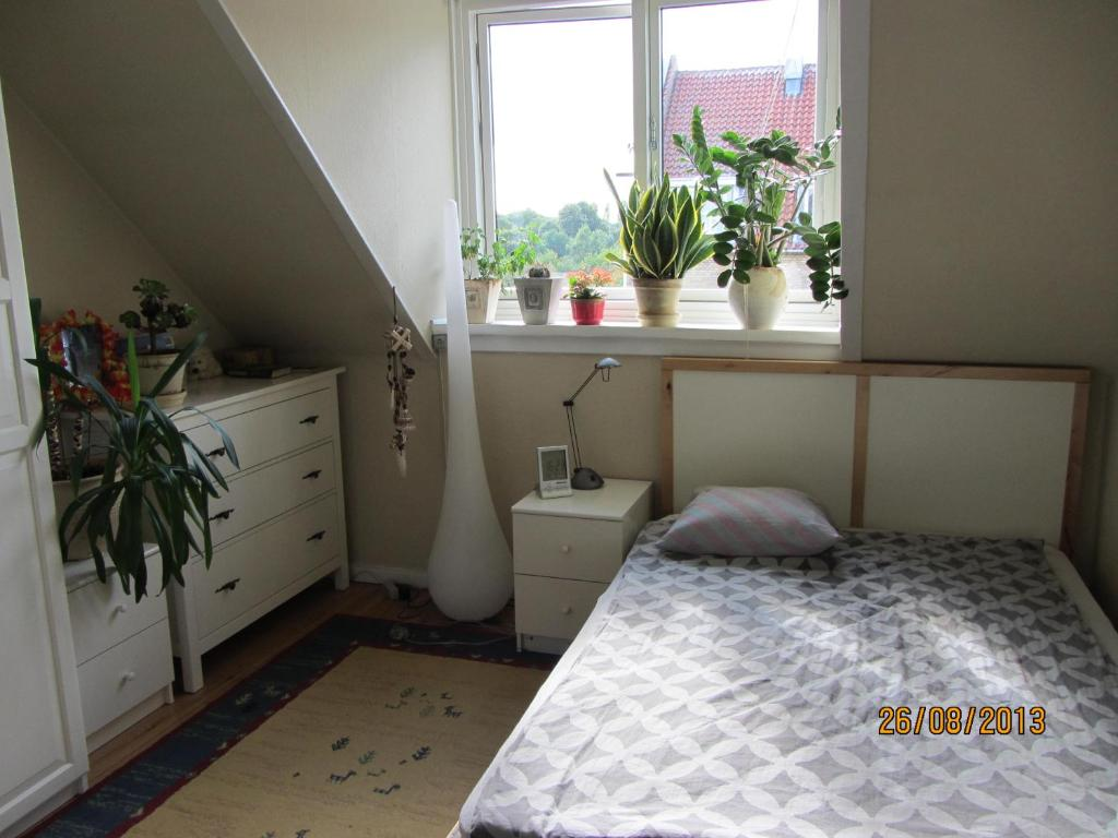 Cosy room in sydhavn