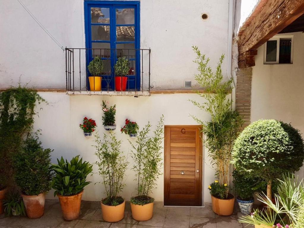 Apartamento Placeta de los Castillas