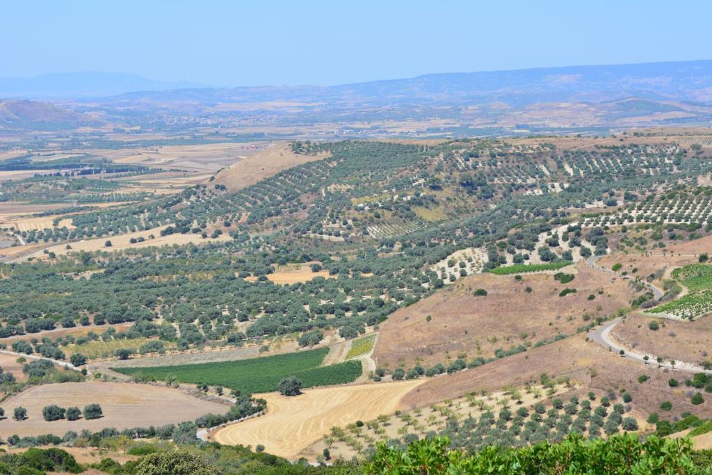 Farm stay Il Borgo dell'Arcangelo img7