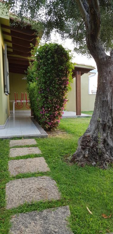 Villa Ulivo 50 mt dal mare img9