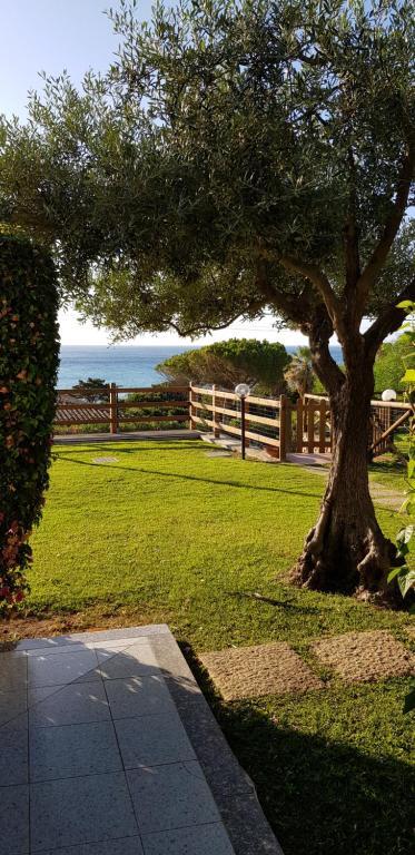 Villa Ulivo 50 mt dal mare img5