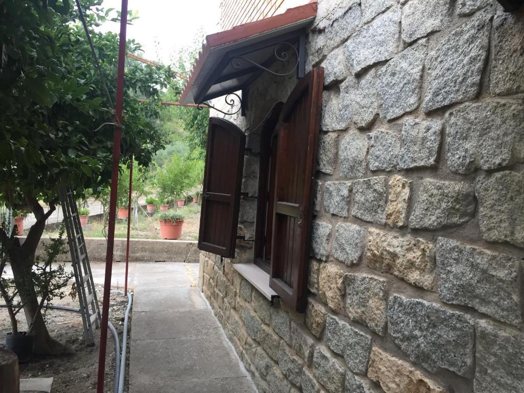 Casa Brandino Pani img2
