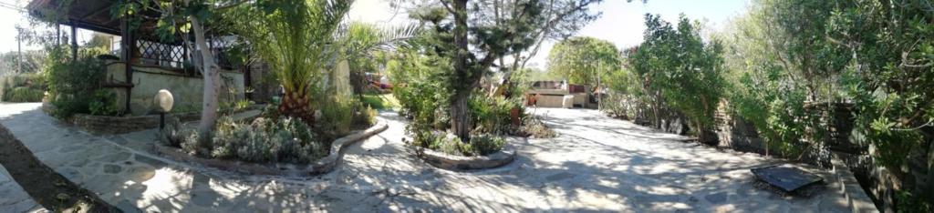 Villa Ottavia bild1