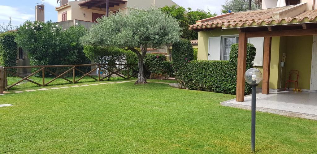 Villa Ulivo 50 mt dal mare bild2