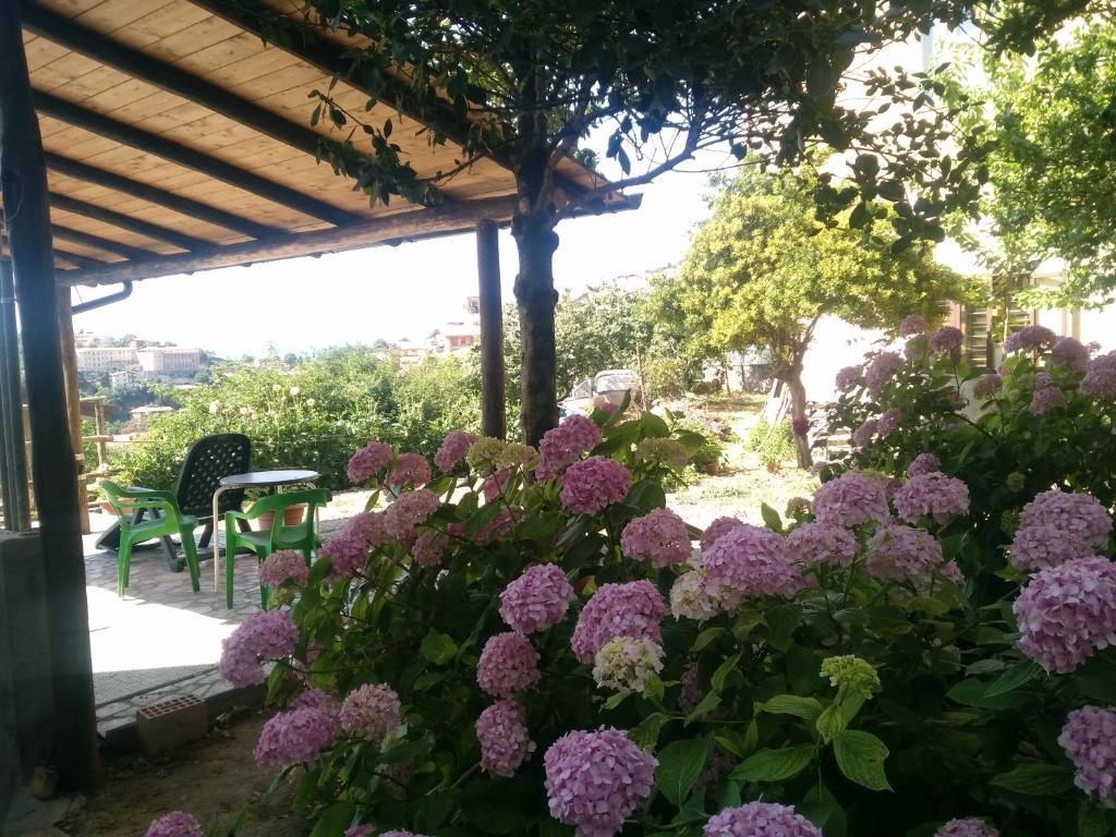 Locazione Turistica appartamento Camino img4