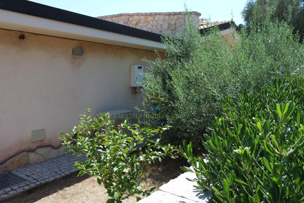 Cipalilla Holiday Home img30