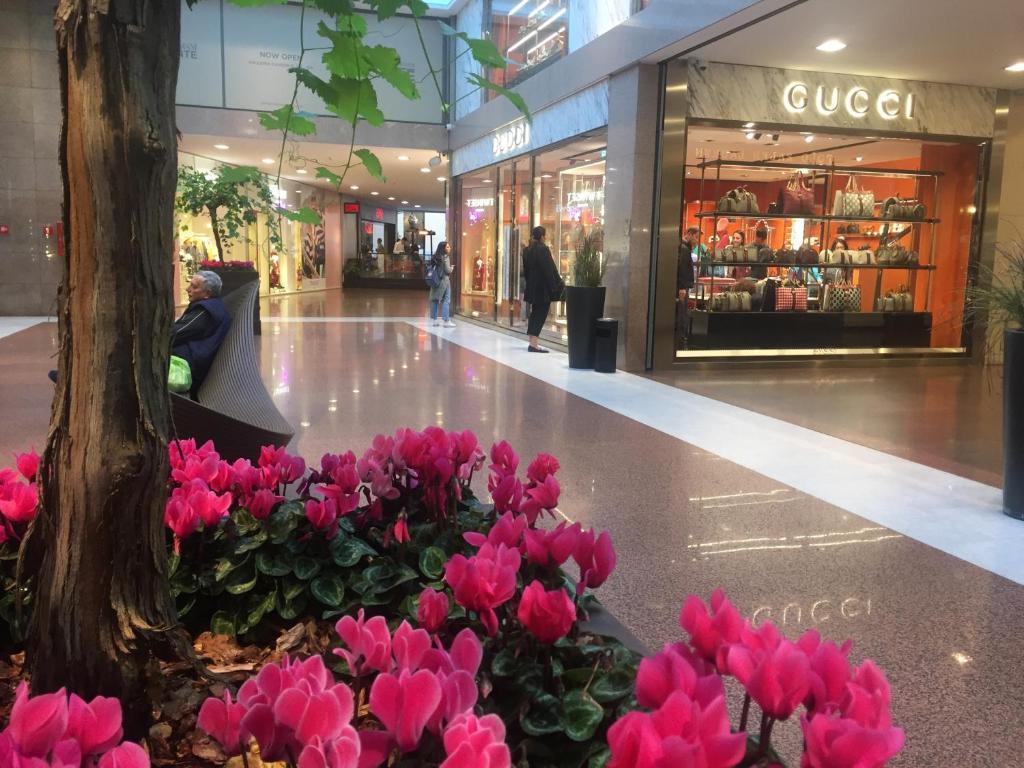 B&B Galleria Cavour