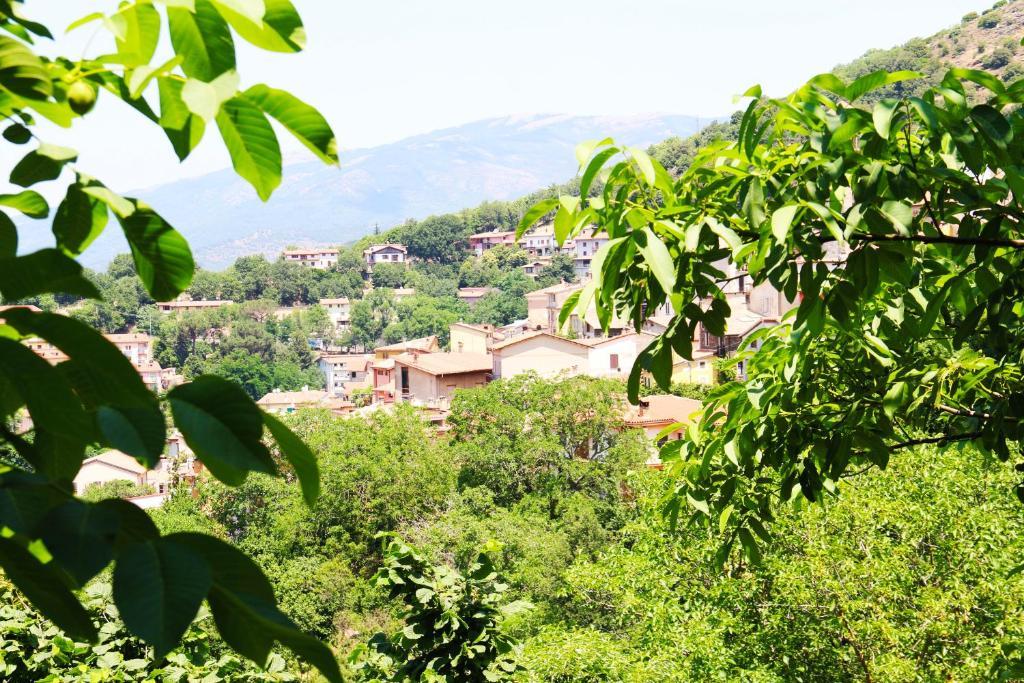 Casa Vacanze Il Giardino - Appartamento Nocciolo bild6
