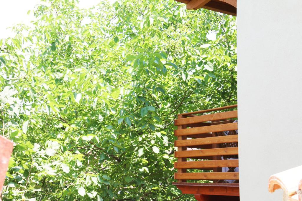 Casa vacanze il Giardino - Appartamento Ciliegio bild5