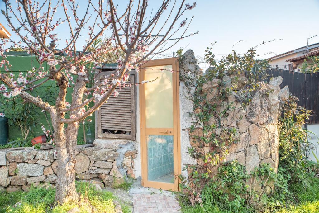 Casa Pietro img3