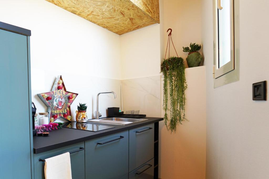 La Tigre Appartamento Con Terrazza In Centro image6