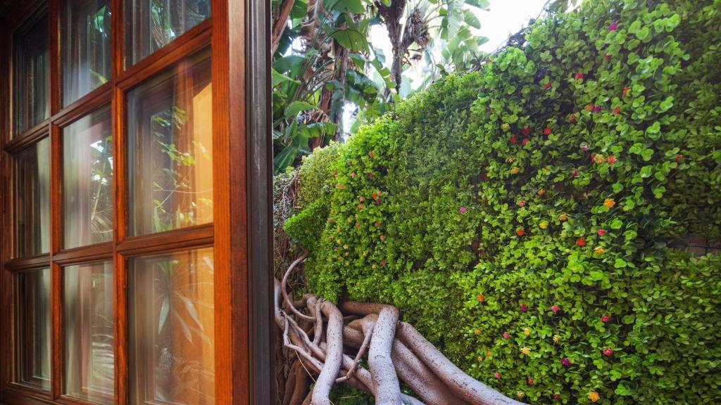 Best Western Plus Sunset Plaza Hotel Photo #47