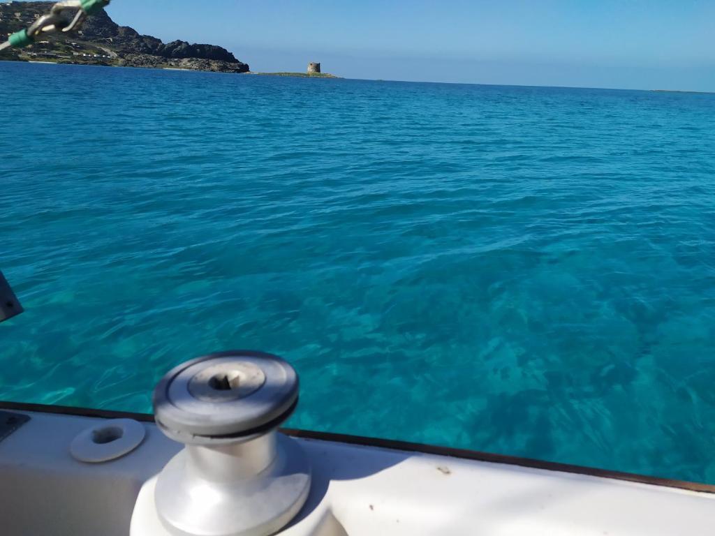 Kanaloa Charter Asinara bild8