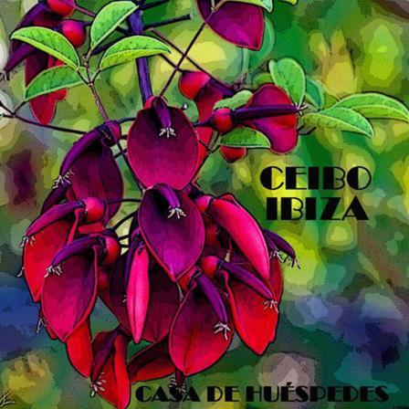 Ceibo Ibiza - Guest House