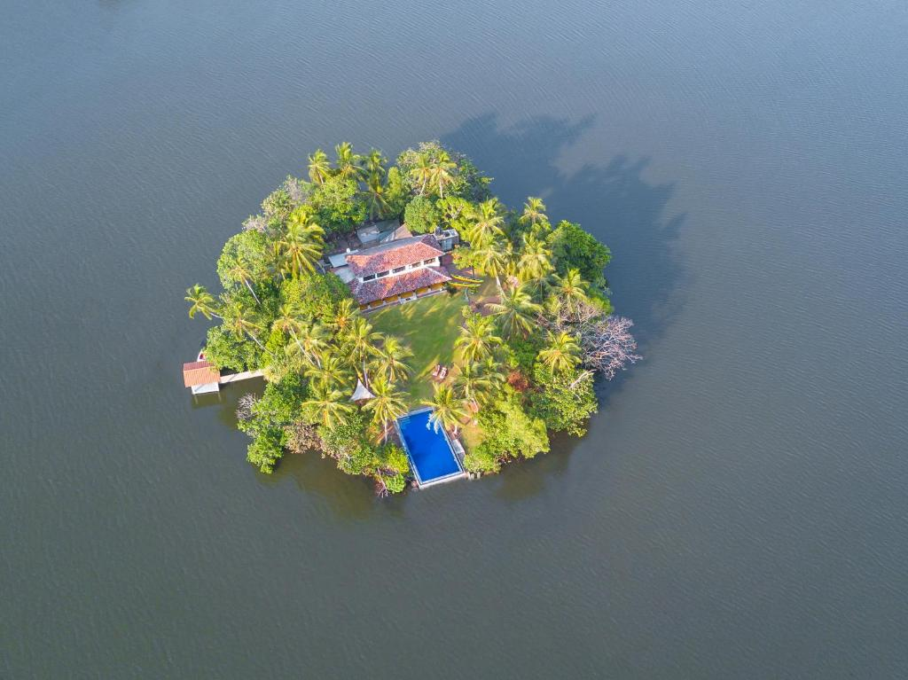The Island on Bolgoda