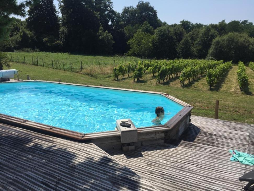 La Maison dans les Vignes