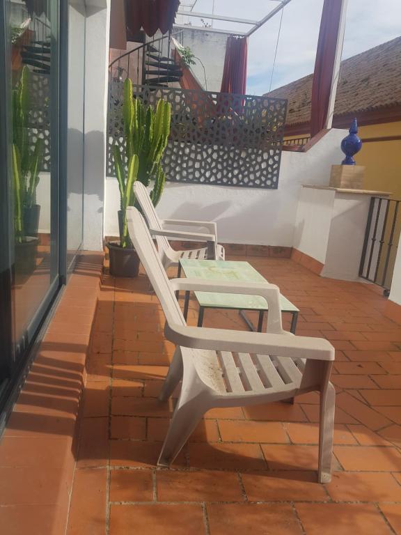 House Sevillana