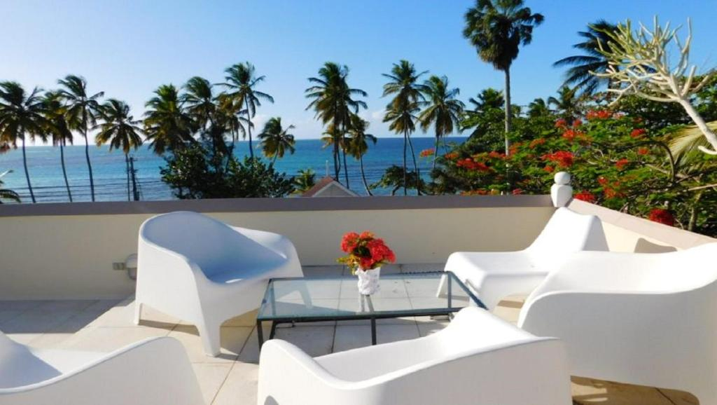 Apartment with 2 bedrooms in Las Terrenas with wonderful sea view enclosed garden and WiFi 20 m from the beach
