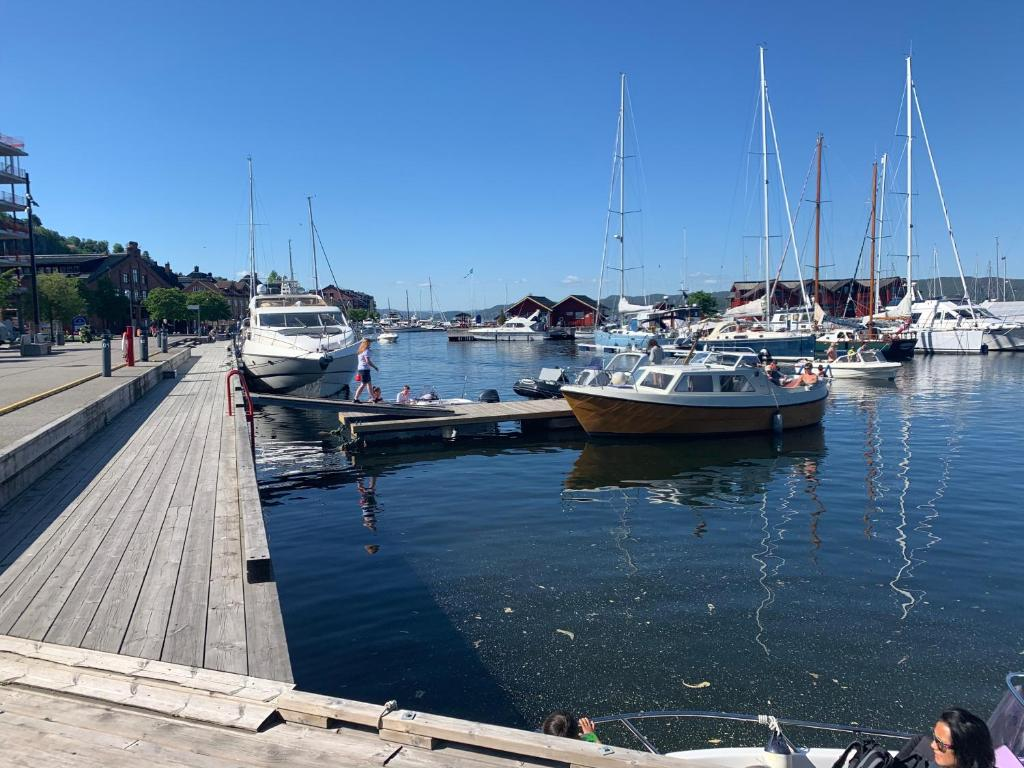 Holiday apartment for 4+ guests in Holmestrand city center