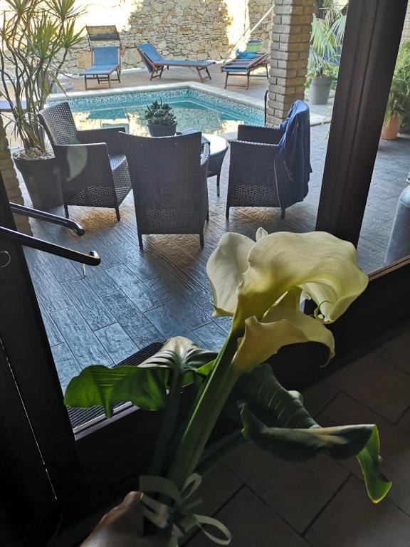 B&B Villa Chederina image3